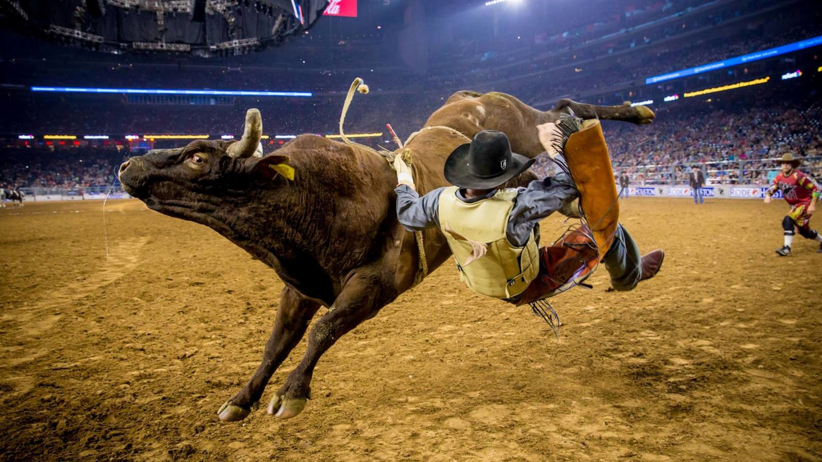 Image Courtesy of Houston Livestock Show and Rodeo